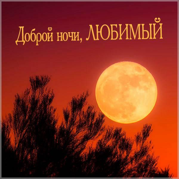 Картинка доброй ночи любимый красивая необычная мужчине - скачать бесплатно на otkrytkivsem.ru