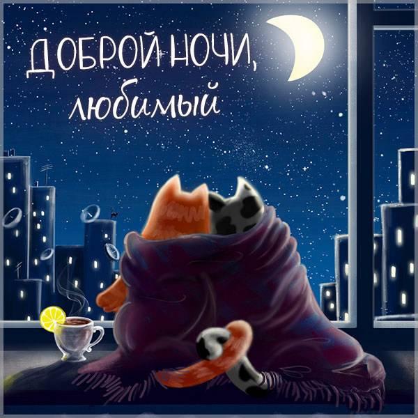 Картинка доброй ночи любимый - скачать бесплатно на otkrytkivsem.ru