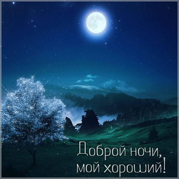 Картинка доброй ночи мой хороший мужчине - скачать бесплатно на otkrytkivsem.ru