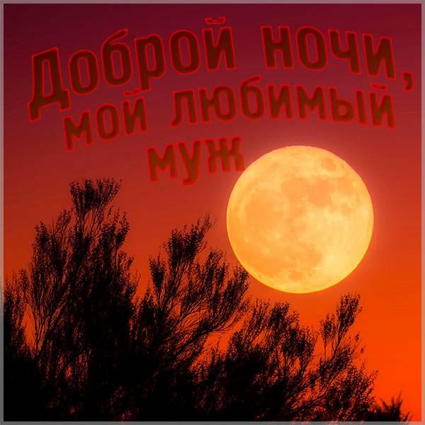 Картинка доброй ночи мужу - скачать бесплатно на otkrytkivsem.ru