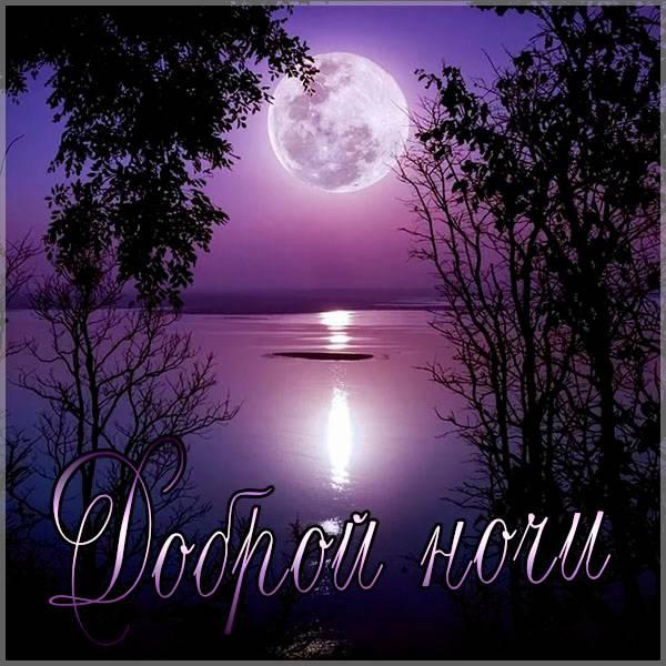 Картинка доброй ночи нежная - скачать бесплатно на otkrytkivsem.ru