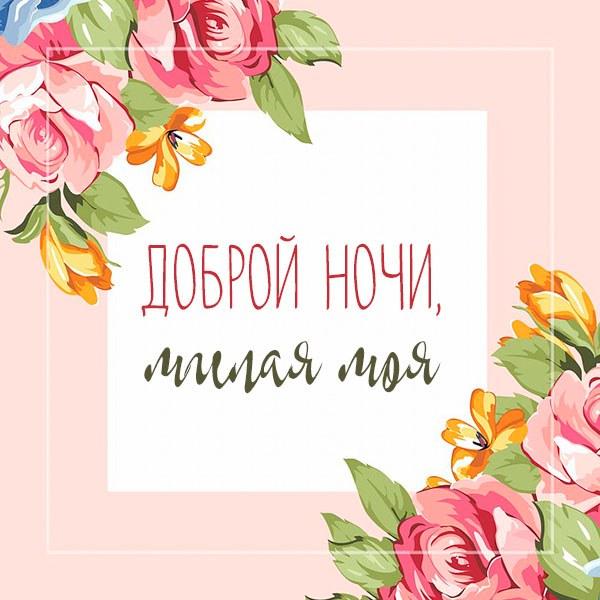 Картинка доброй ночи с надписью для девушки - скачать бесплатно на otkrytkivsem.ru
