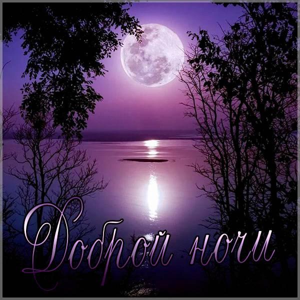 Картинка доброй ночи с надписью природа - скачать бесплатно на otkrytkivsem.ru