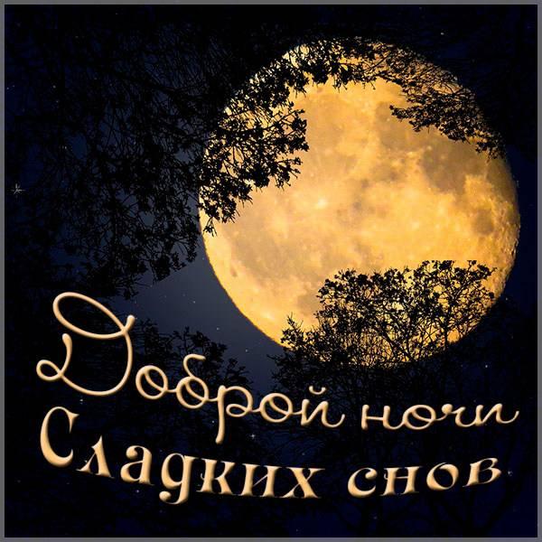 Картинка доброй ночи сладких снов мужчине - скачать бесплатно на otkrytkivsem.ru