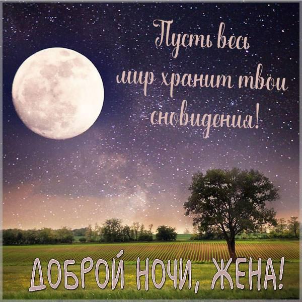 Картинка доброй ночи жене - скачать бесплатно на otkrytkivsem.ru