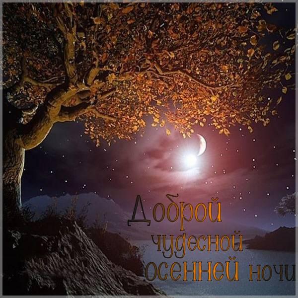 Картинка доброй осенней ночи - скачать бесплатно на otkrytkivsem.ru
