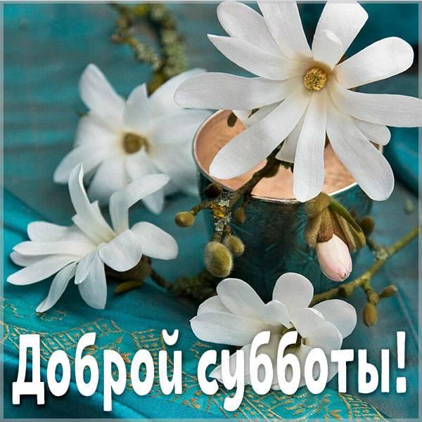 Картинка доброй субботы новая красивая - скачать бесплатно на otkrytkivsem.ru