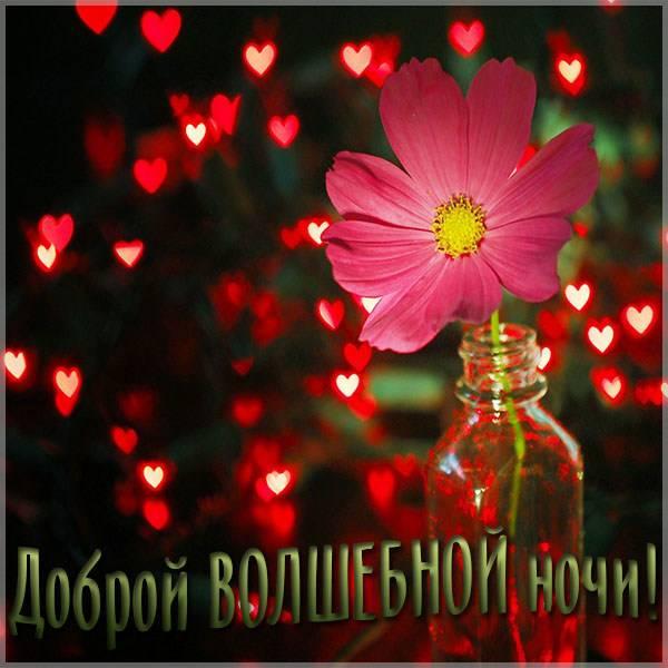 Картинка доброй волшебной ночи - скачать бесплатно на otkrytkivsem.ru