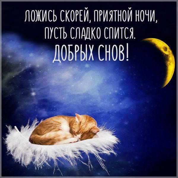 Картинка добрых снов прикольная мужчине шуточная - скачать бесплатно на otkrytkivsem.ru