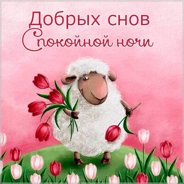 Картинка добрых снов спокойной ночи красивая весенняя - скачать бесплатно на otkrytkivsem.ru