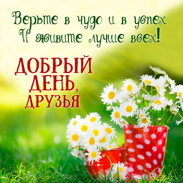 Картинка добрый день друзья с пожеланием - скачать бесплатно на otkrytkivsem.ru