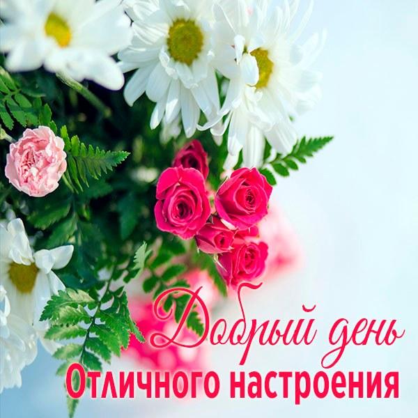 Картинка добрый день и отличного настроения - скачать бесплатно на otkrytkivsem.ru