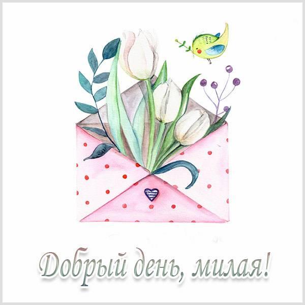 Картинка добрый день милая красивая - скачать бесплатно на otkrytkivsem.ru