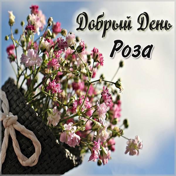 Картинка добрый день Роза - скачать бесплатно на otkrytkivsem.ru
