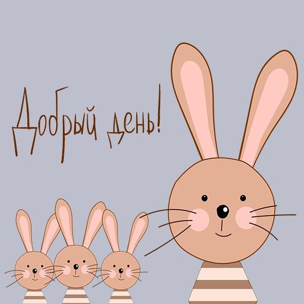Картинка добрый день с животными прикольная - скачать бесплатно на otkrytkivsem.ru