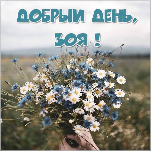 Картинка добрый день Зоя - скачать бесплатно на otkrytkivsem.ru