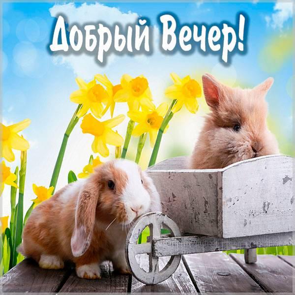 Картинка добрый вечер красивая необычная весна прикол - скачать бесплатно на otkrytkivsem.ru