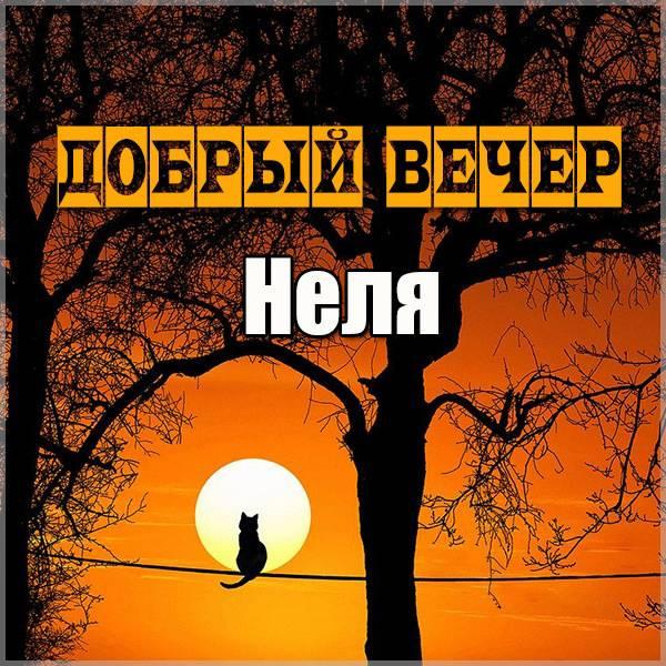 Картинка добрый вечер Неля - скачать бесплатно на otkrytkivsem.ru