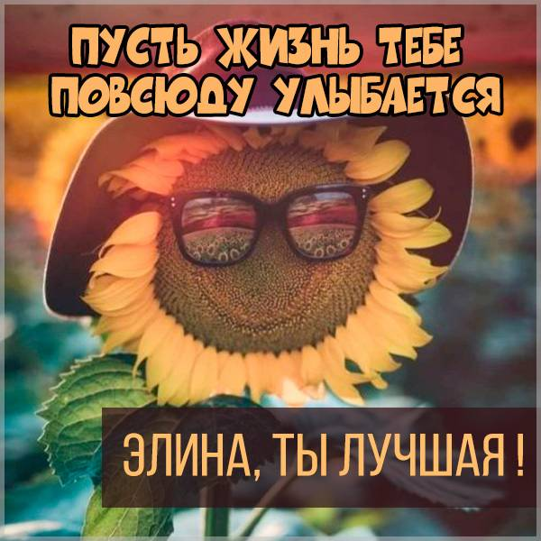 Картинка Элина ты лучшая - скачать бесплатно на otkrytkivsem.ru