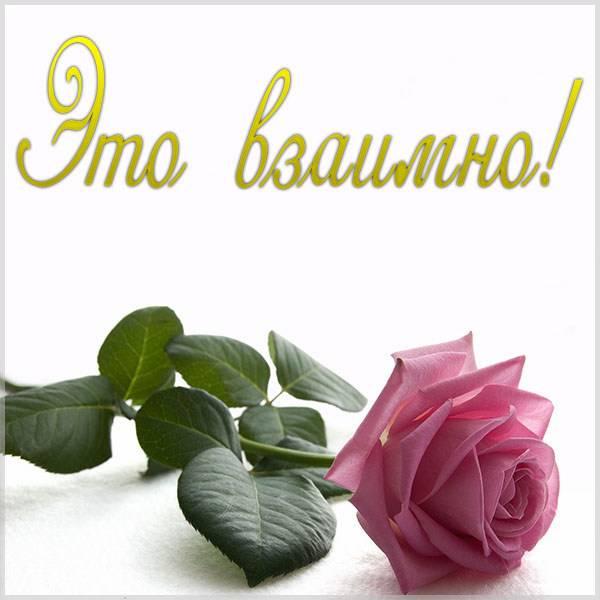 Картинка это взаимно - скачать бесплатно на otkrytkivsem.ru