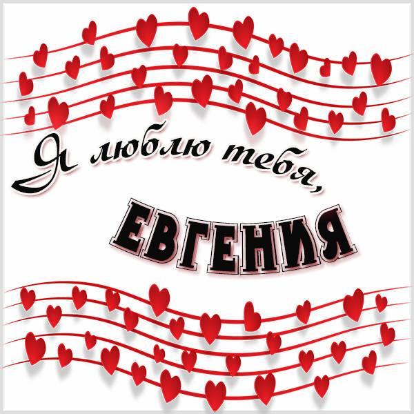Картинка Евгения я тебя люблю - скачать бесплатно на otkrytkivsem.ru