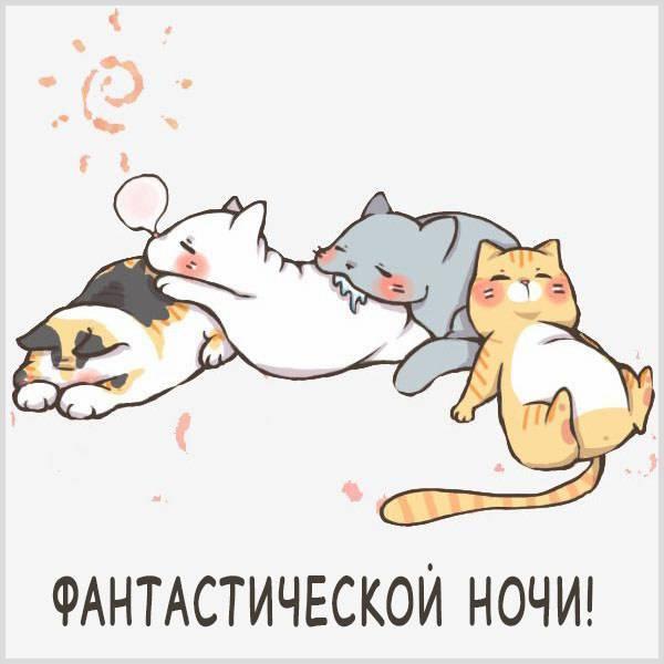 Картинка фантастической ночи прикольная смешная - скачать бесплатно на otkrytkivsem.ru