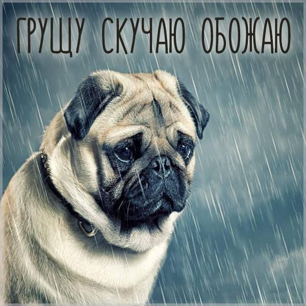 Картинка грущу скучаю обожаю - скачать бесплатно на otkrytkivsem.ru
