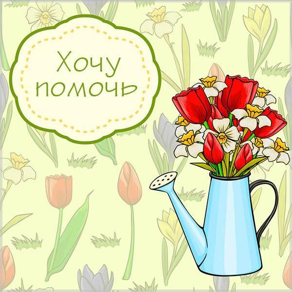 Картинка хочу помочь - скачать бесплатно на otkrytkivsem.ru