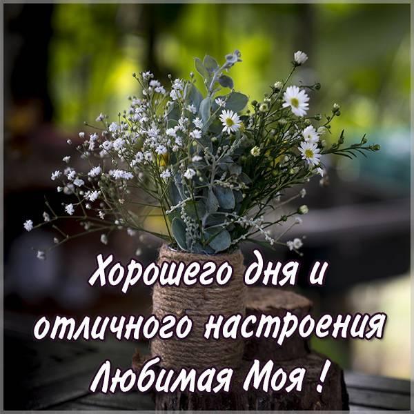 Картинка хорошего дня и отличного настроения любимая - скачать бесплатно на otkrytkivsem.ru