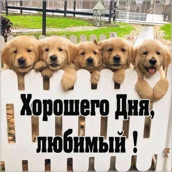 Картинка хорошего дня любимый с надписью прикольная - скачать бесплатно на otkrytkivsem.ru