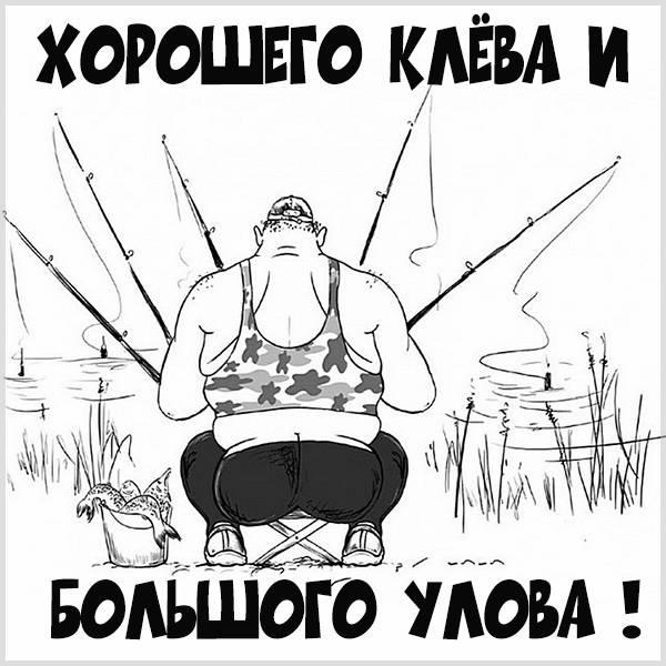 Картинка хорошего клева большого улова - скачать бесплатно на otkrytkivsem.ru