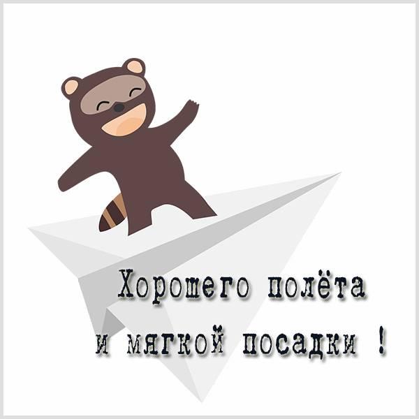 Картинка хорошего полета и мягкой посадки веселая - скачать бесплатно на otkrytkivsem.ru