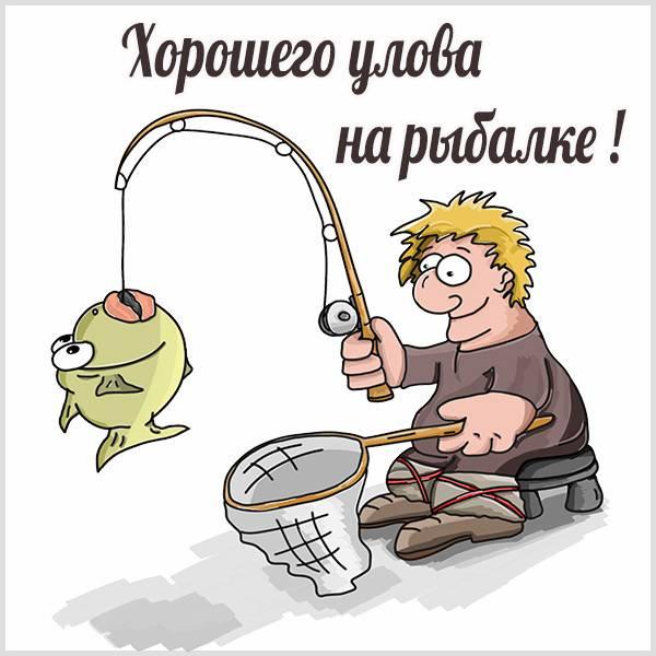 Картинка хорошего улова на рыбалке прикольная - скачать бесплатно на otkrytkivsem.ru