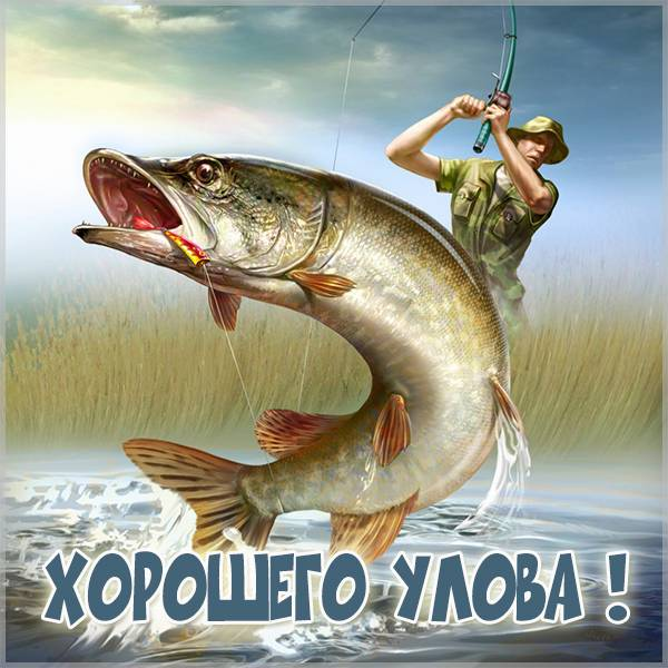 Картинка хорошего улова - скачать бесплатно на otkrytkivsem.ru