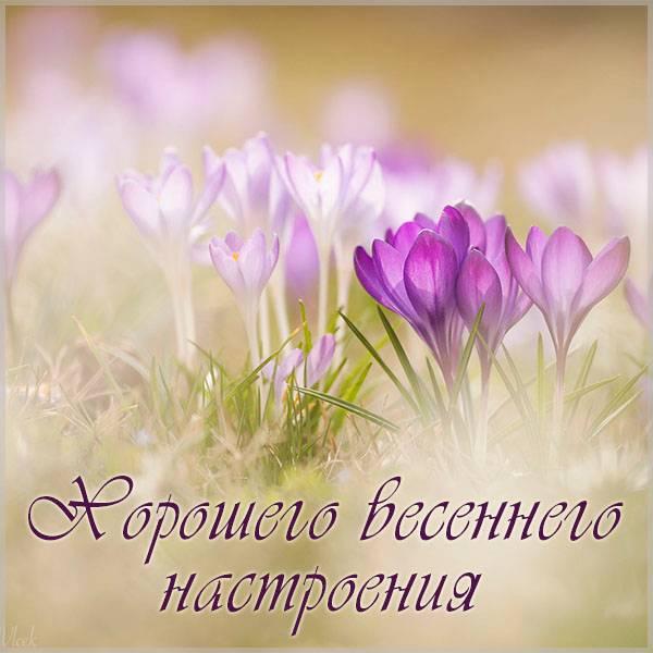 Картинка хорошего весеннего настроения красивая - скачать бесплатно на otkrytkivsem.ru