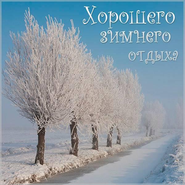 Картинка хорошего зимнего отдыха - скачать бесплатно на otkrytkivsem.ru