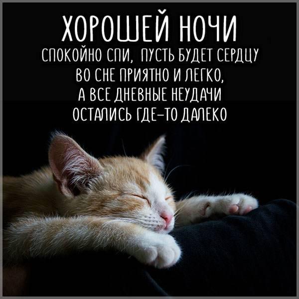 Картинка хорошей ночи мужчине - скачать бесплатно на otkrytkivsem.ru