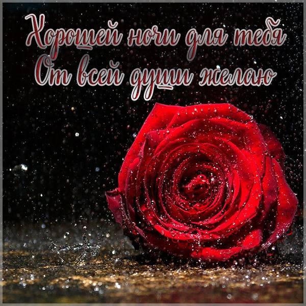 Картинка хорошей ночи новая - скачать бесплатно на otkrytkivsem.ru
