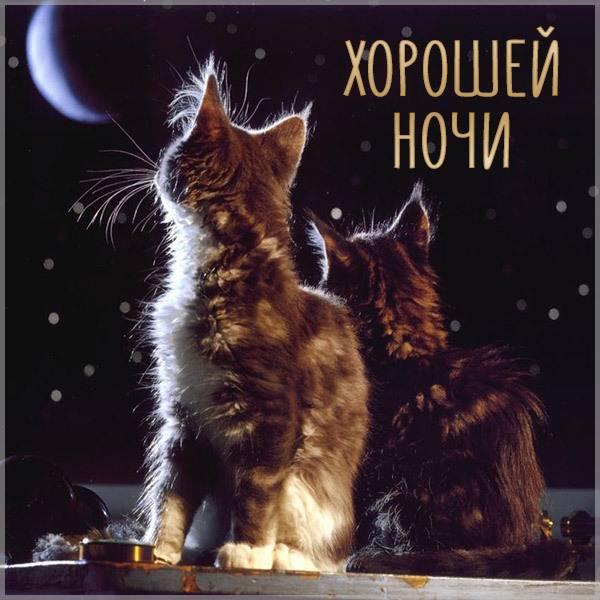 Картинка хорошей ночи - скачать бесплатно на otkrytkivsem.ru