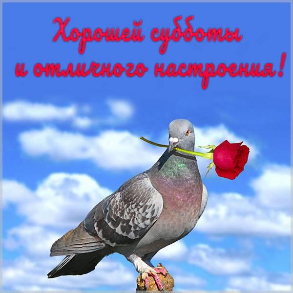 Картинка хорошей субботы и отличного настроения - скачать бесплатно на otkrytkivsem.ru