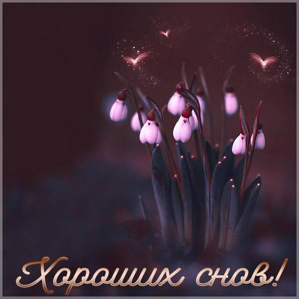 Картинка хороших снов новая - скачать бесплатно на otkrytkivsem.ru