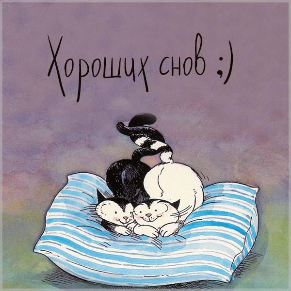 Картинка хороших снов прикольная - скачать бесплатно на otkrytkivsem.ru