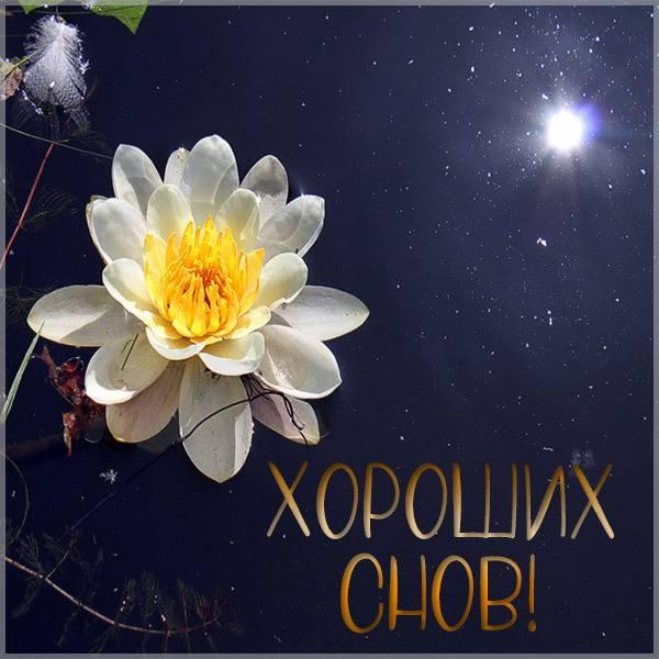 Картинка хороших снов с надписью - скачать бесплатно на otkrytkivsem.ru