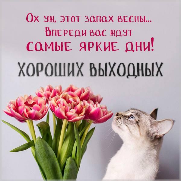Картинка хороших выходных весенняя - скачать бесплатно на otkrytkivsem.ru