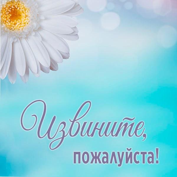 Картинка извините пожалуйста - скачать бесплатно на otkrytkivsem.ru
