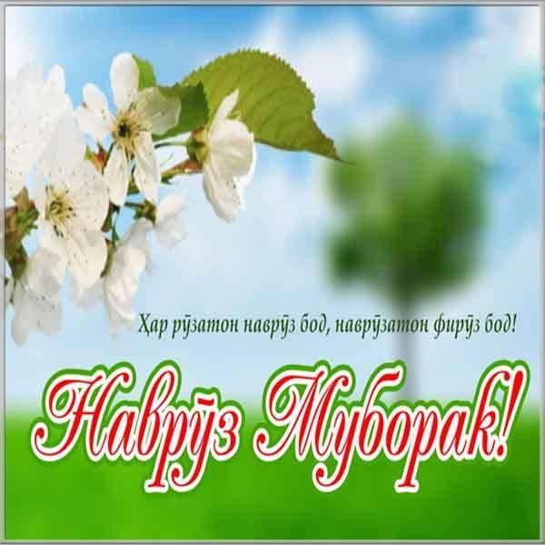 Картинка к празднику Наурыз - скачать бесплатно на otkrytkivsem.ru
