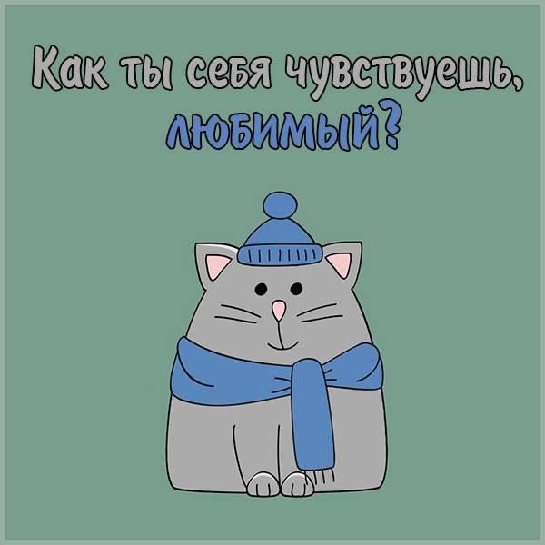 Картинка как ты себя чувствуешь любимый - скачать бесплатно на otkrytkivsem.ru