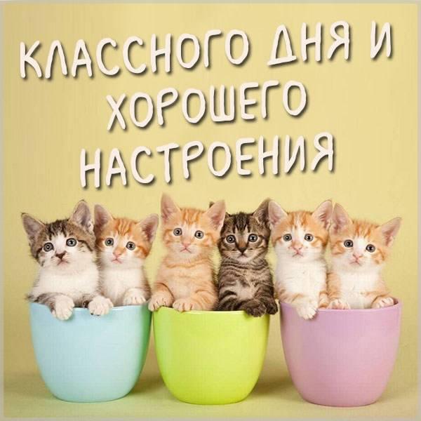 Картинка классного дня и хорошего настроения - скачать бесплатно на otkrytkivsem.ru