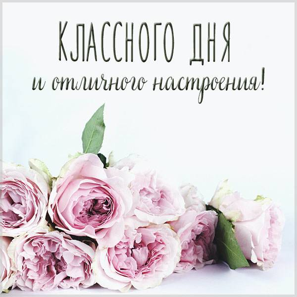 Картинка классного дня и отличного настроения - скачать бесплатно на otkrytkivsem.ru