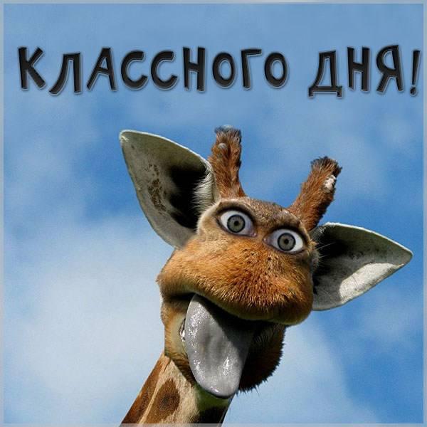 Картинка классного дня прикольная необычная - скачать бесплатно на otkrytkivsem.ru